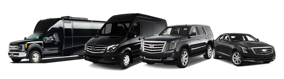 A fleet of black transportation vehicles.